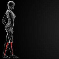 הטיפול בכאבי שוקיים ברשת מזור לכאב